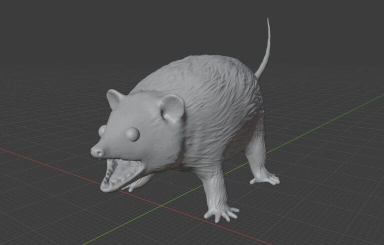 hissing opossum model